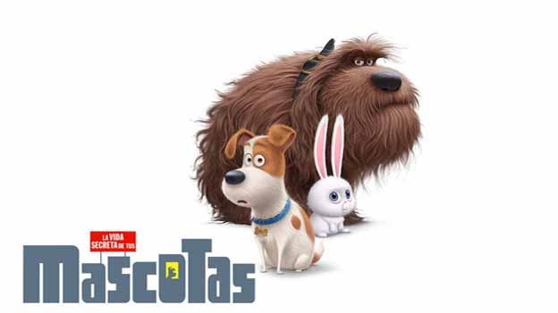 nuevo-trailer-de-mascotas